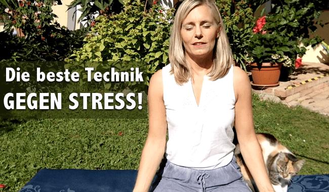 technik gegen stress meditation